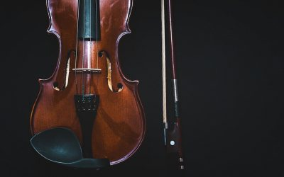 Does a violin have frets?
